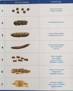 Bristol Stool Form Scale ontlasting