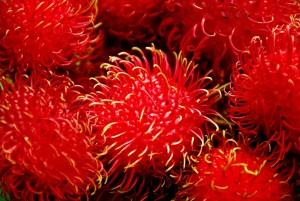 Rambutan huid huidverzorging