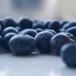 Blauwe bessen, insulineresistentie en insulinegevoeligheid