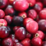 Cranberry's, dé natuurlijke remedie bij blaasontsteking en urineweginfecties