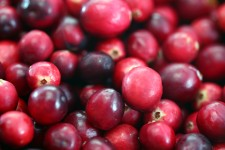cranberries urineweginfecties