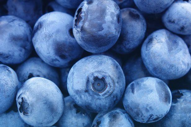 anti-aging voedingsmiddelen blauwe bessen