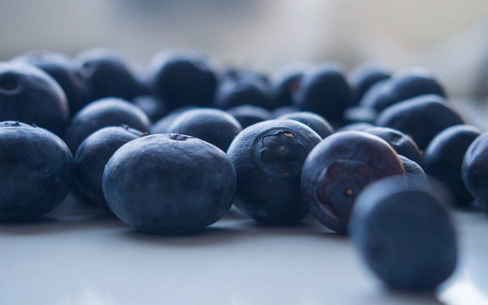 blauwe bessen insulinegevoeligheid insulineresistentie