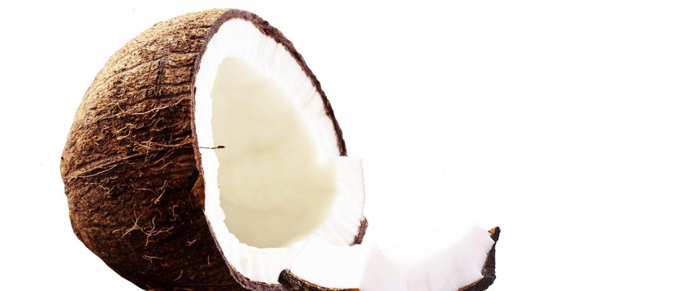 kokosfudge recept ketogeen dieet