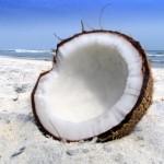 Wat zijn de gezondheidsvoordelen van kokosolie?