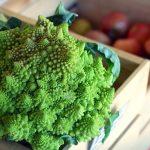 De invloed van kruisbloemige groenten en kool op de schildklierfunctie
