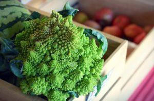 kruisbloemige groenten kool schilklier