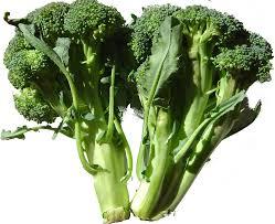 pantotheenzuur, selenium, vitamine E