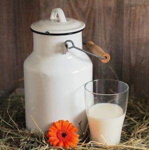 rauwe melk gezondheidsvoordelen