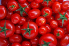 tomaten lycopeen